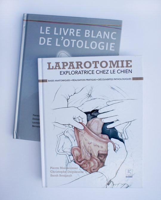 La laparotomie exploratrice chez le chien & Le livre blanc de l'ontologie
